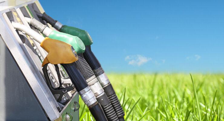 E10: Mineralölwirtschaft fühlt sich unschuldig